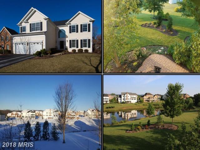 5658 Olympia Fields Place, Haymarket, VA 20169 (#PW10137639) :: The Tom Conner Team