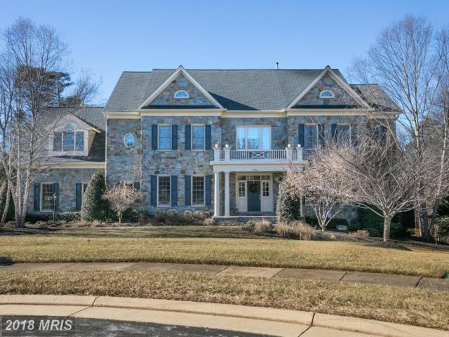 5954 Cody Spring Place, Haymarket, VA 20169 (#PW10137830) :: The Bob & Ronna Group