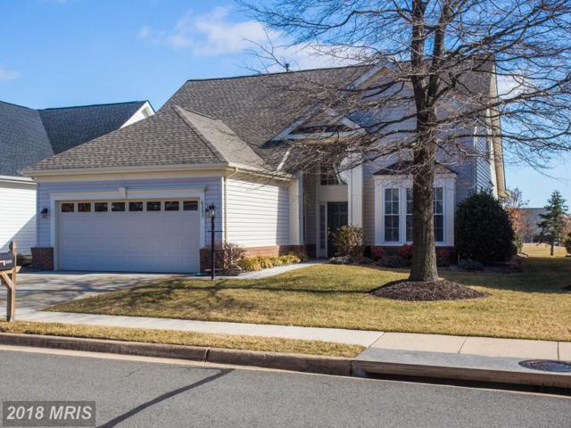 6205 Settlers Trail Place, Gainesville, VA 20155 (#PW10150122) :: The Gus Anthony Team