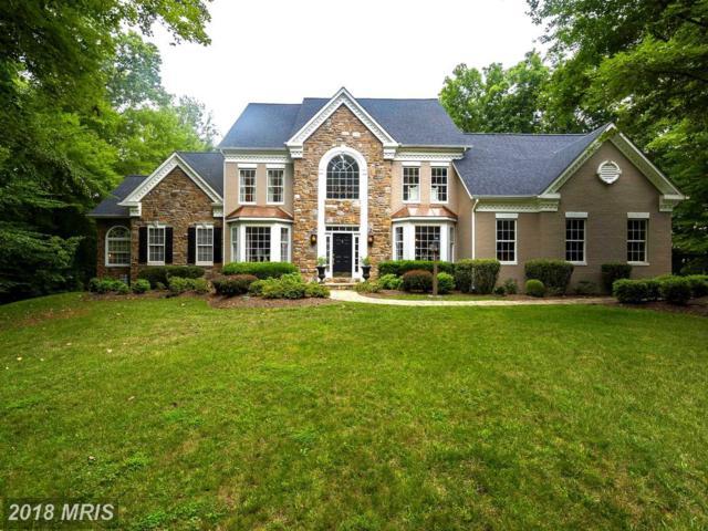 11697 Sandal Wood Lane, Manassas, VA 20112 (#PW10152423) :: Network Realty Group