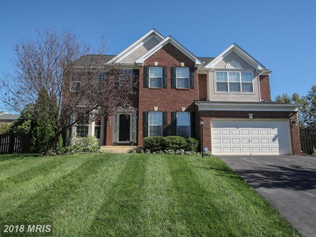 8641 Horncastle Court, Bristow, VA 20136 (#PW10154934) :: The Tom Conner Team