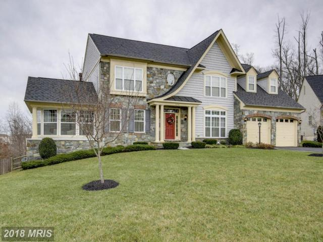3308 Dondis Creek Drive, Triangle, VA 22172 (MLS #PW10155559) :: Explore Realty Group
