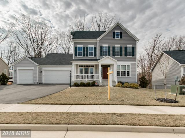 10339 Spring Iris Drive, Bristow, VA 20136 (#PW10156323) :: The Tom Conner Team