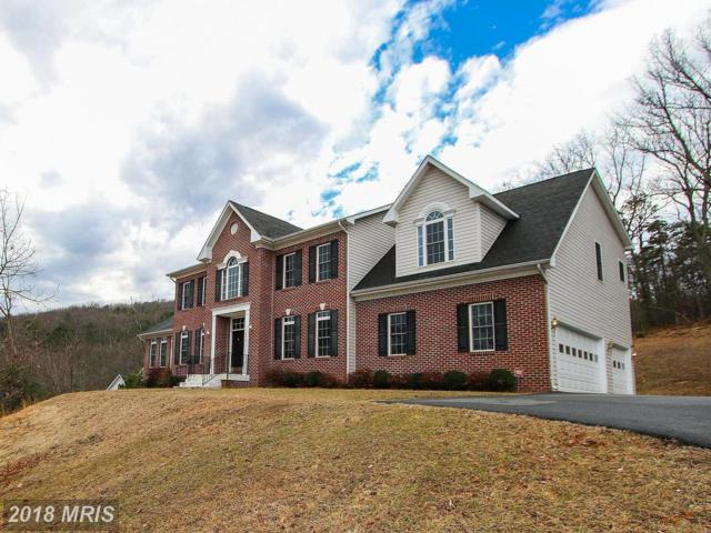1406 Mercer Road, Haymarket, VA 20169 (#PW10156790) :: Network Realty Group