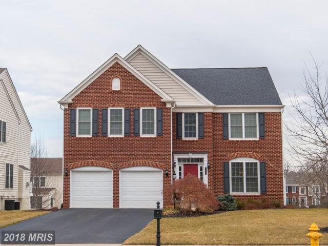 10819 Mayfield Trace Place, Manassas, VA 20112 (#PW10157195) :: Network Realty Group