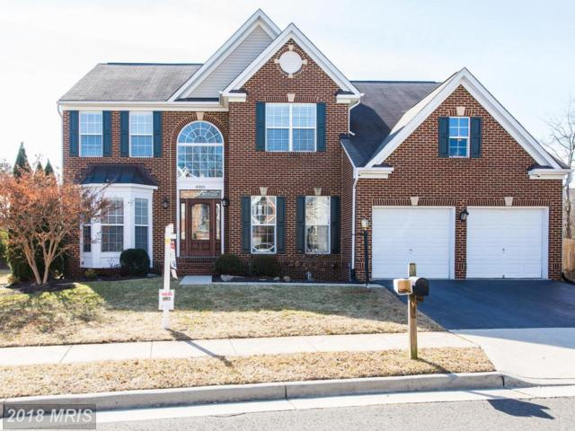 8325 Crimson Crossing Way, Gainesville, VA 20155 (#PW10157979) :: Network Realty Group