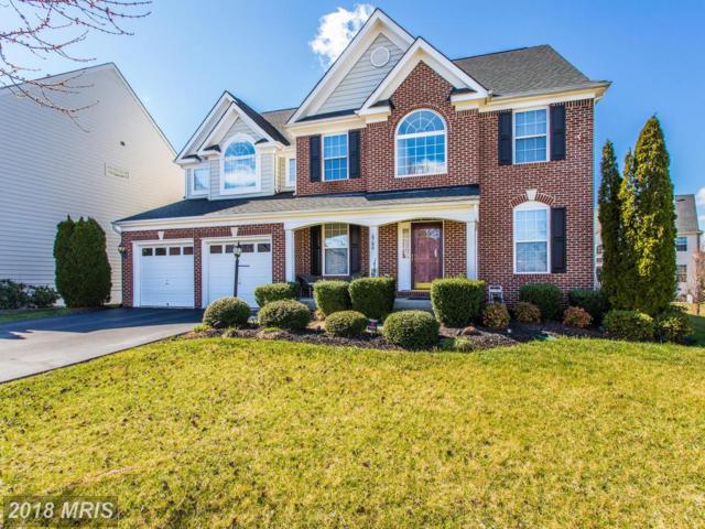 6700 Grace View Street, Gainesville, VA 20155 (#PW10159069) :: RE/MAX Gateway