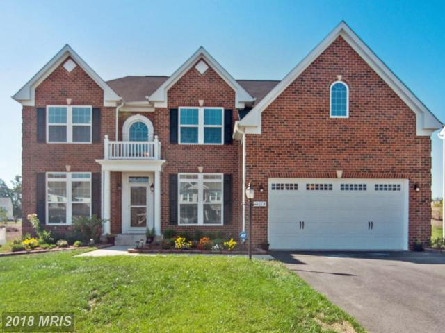 15614 Habitat Court, Woodbridge, VA 22193 (#PW10159309) :: The Tom Conner Team