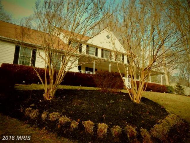 8133 Blandsford Drive, Manassas, VA 20111 (#PW10159456) :: RE/MAX Gateway