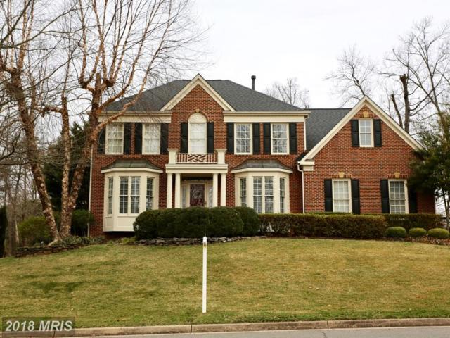 14480 Sedona Drive, Gainesville, VA 20155 (#PW10159547) :: Pearson Smith Realty