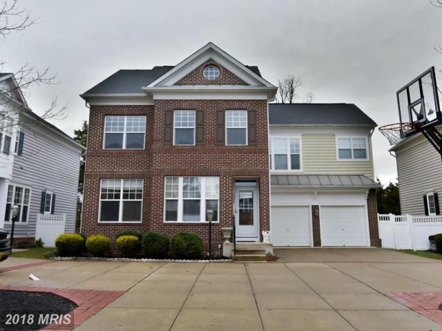 10034 Orland Stone Drive, Bristow, VA 20136 (#PW10160766) :: Network Realty Group