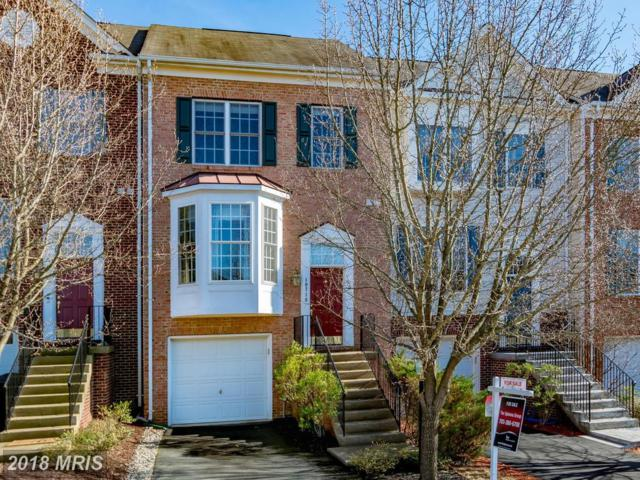 10719 Dabshire Way, Manassas, VA 20110 (#PW10161443) :: RE/MAX Gateway