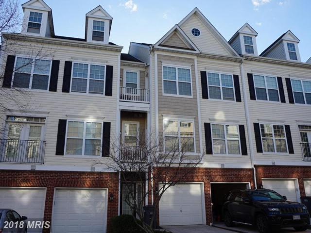 1819 Cedar Cove Way #101, Woodbridge, VA 22191 (#PW10161692) :: AJ Team Realty