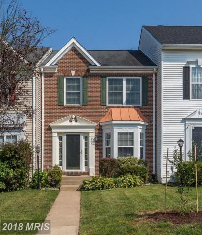 9053 Slate Stone Loop, Bristow, VA 20136 (#PW10162564) :: Network Realty Group