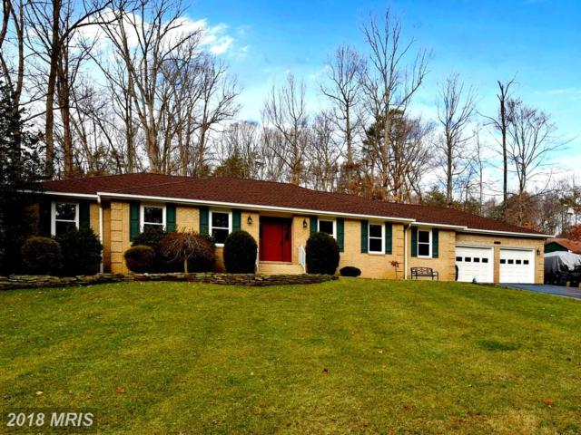 13440 Carriage Hill Drive, Manassas, VA 20112 (#PW10162767) :: Network Realty Group
