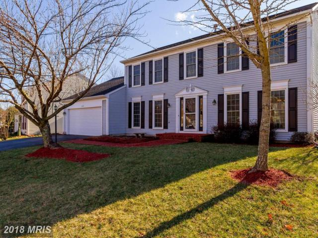 8212 Crackling Fire Drive, Gainesville, VA 20155 (#PW10162976) :: Pearson Smith Realty