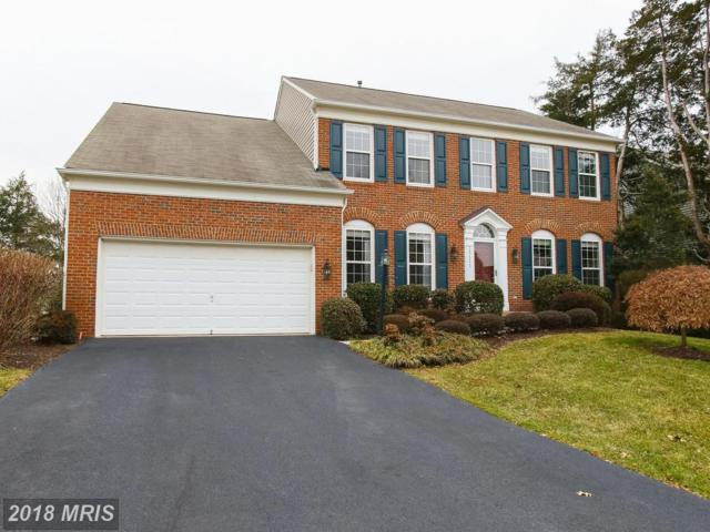 15111 Stepping Stone Drive, Haymarket, VA 20169 (#PW10163118) :: Wilson Realty Group