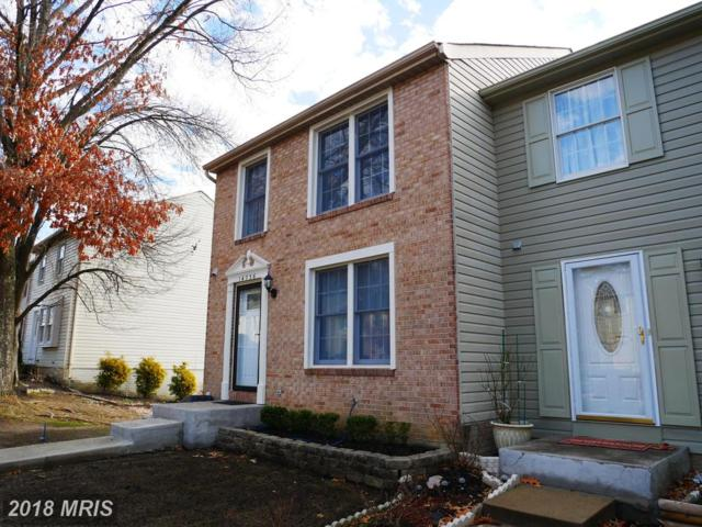 14736 Winding Loop, Woodbridge, VA 22191 (#PW10163609) :: RE/MAX Executives