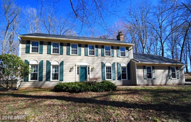 4343 Banbury Drive, Gainesville, VA 20155 (#PW10167893) :: Advance Realty Bel Air, Inc