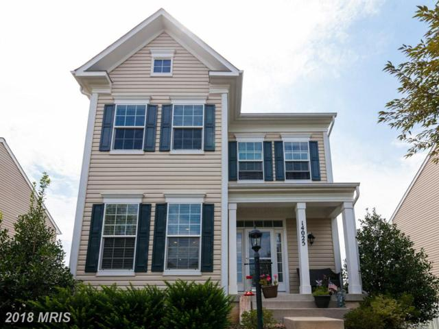 14025 Willet Way, Gainesville, VA 20155 (#PW10171635) :: Colgan Real Estate