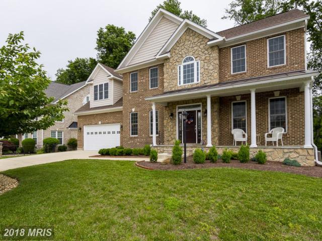 1102 Tournai Court, Woodbridge, VA 22191 (#PW10171913) :: RE/MAX Executives