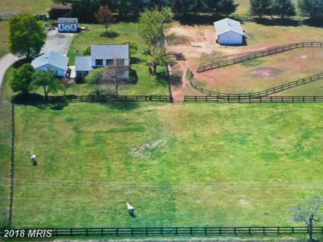 12421 Parkgate Drive, Nokesville, VA 20181 (#PW10174016) :: Jacobs & Co. Real Estate