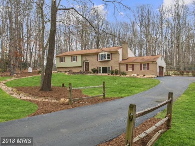 13561 Pleasant Colony Drive, Manassas, VA 20112 (#PW10174110) :: CR of Maryland