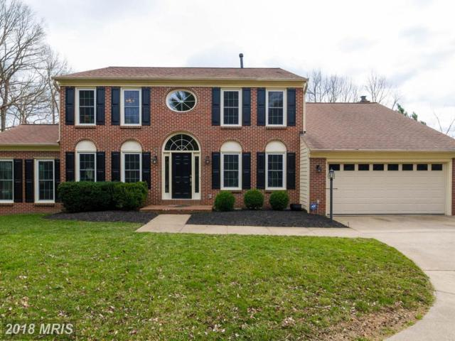4257 Moot Drive, Dumfries, VA 22025 (#PW10175262) :: AJ Team Realty
