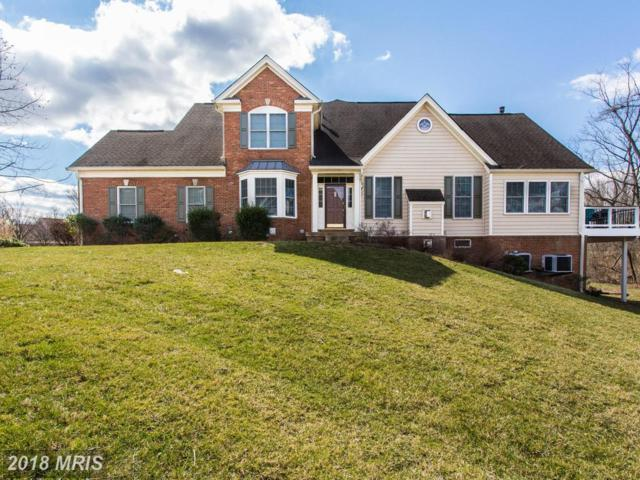 5765 Amelia Springs Circle, Haymarket, VA 20169 (#PW10176811) :: Colgan Real Estate