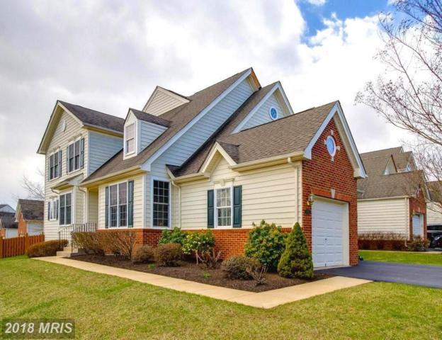 15827 Fourmile Creek Court, Haymarket, VA 20169 (#PW10176841) :: Colgan Real Estate