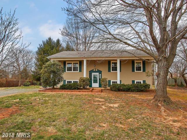 12012 Aden Road, Nokesville, VA 20181 (#PW10179720) :: Jacobs & Co. Real Estate