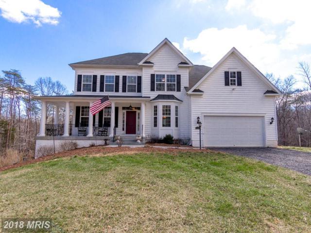 14101 Heathers Overlook Court, Nokesville, VA 20181 (#PW10180537) :: Jacobs & Co. Real Estate
