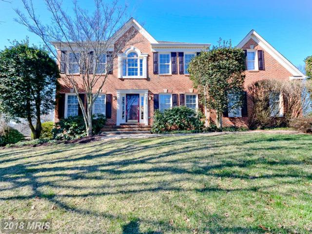 7810 Virginia Oaks Drive, Gainesville, VA 20155 (#PW10182219) :: Colgan Real Estate