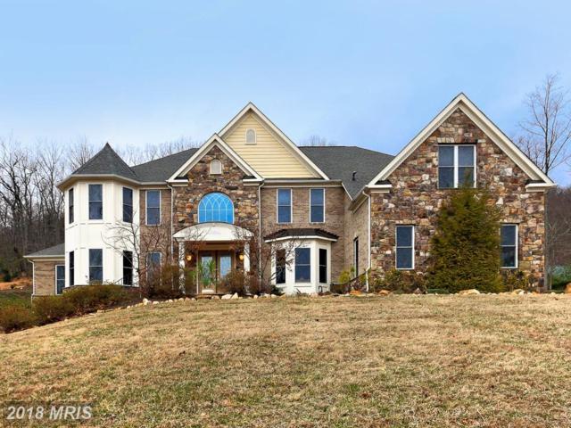 3718 Mountain Road, Haymarket, VA 20169 (#PW10182555) :: Jacobs & Co. Real Estate
