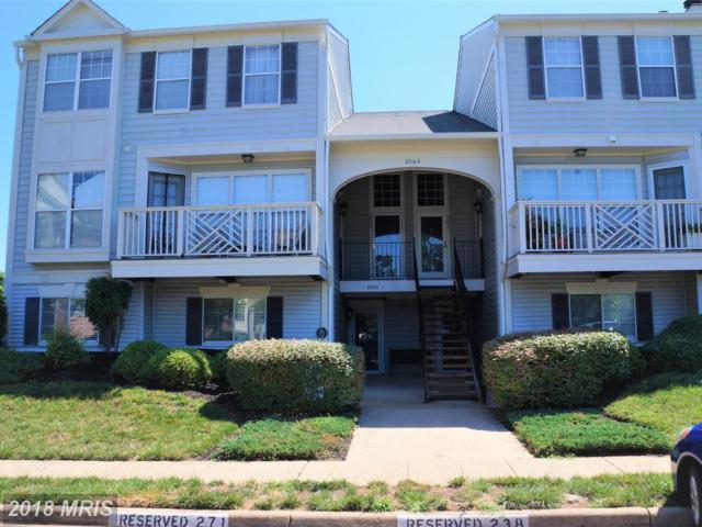 8065 Stonewall Brigade Court #101, Manassas, VA 20109 (#PW10182568) :: Colgan Real Estate
