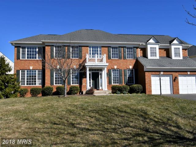 8618 Wales Court, Gainesville, VA 20155 (#PW10182648) :: Colgan Real Estate