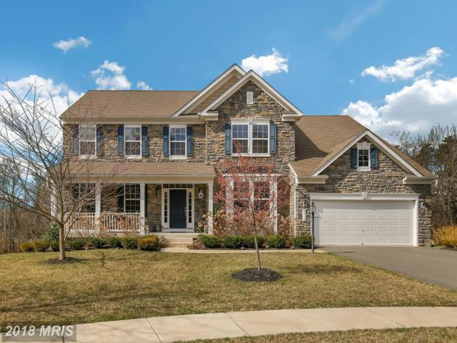 8110 Tysons Oaks Court, Gainesville, VA 20155 (#PW10182945) :: Colgan Real Estate