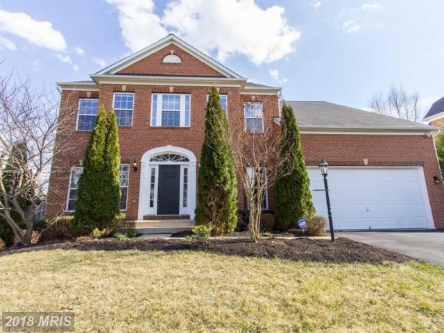 5599 Websters Way, Manassas, VA 20112 (#PW10183570) :: Colgan Real Estate