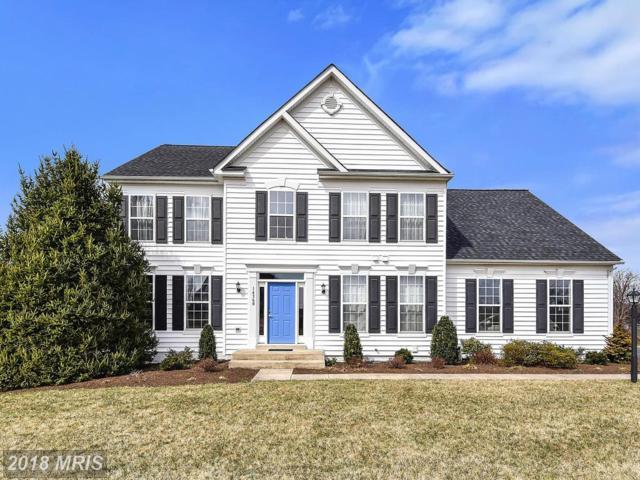 14360 Dowden Downs Drive, Haymarket, VA 20169 (#PW10183709) :: Jacobs & Co. Real Estate