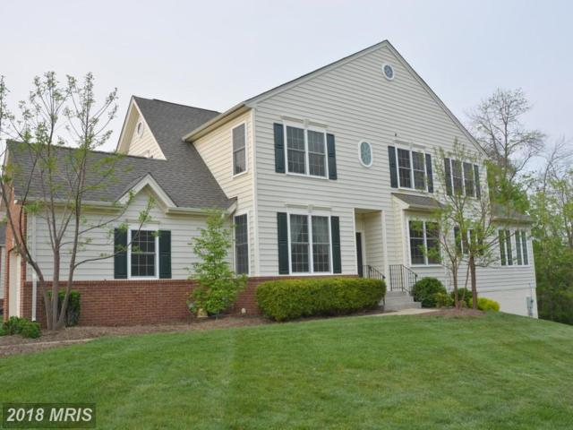 5607 Swift Creek Court, Haymarket, VA 20169 (#PW10183719) :: Colgan Real Estate