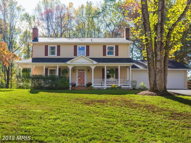 9009 Sowder Place, Nokesville, VA 20181 (#PW10184645) :: TVRG Homes