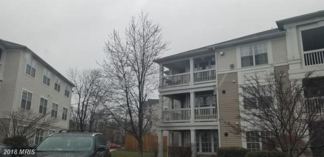 8075 Lacy Drive #301, Manassas, VA 20109 (#PW10185948) :: Arlington Realty, Inc.