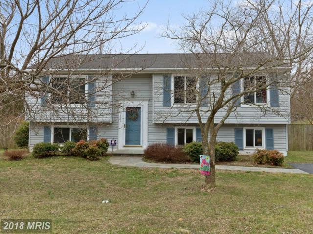 3417 Chelsea Drive, Woodbridge, VA 22192 (#PW10196150) :: Green Tree Realty