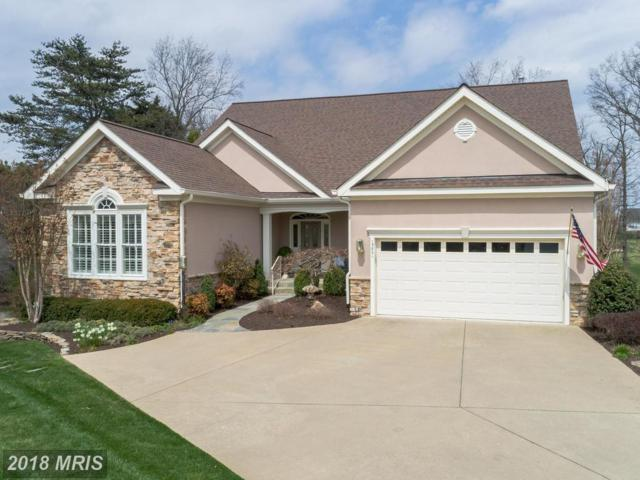 13801 Charismatic Way, Gainesville, VA 20155 (#PW10213113) :: The Gus Anthony Team