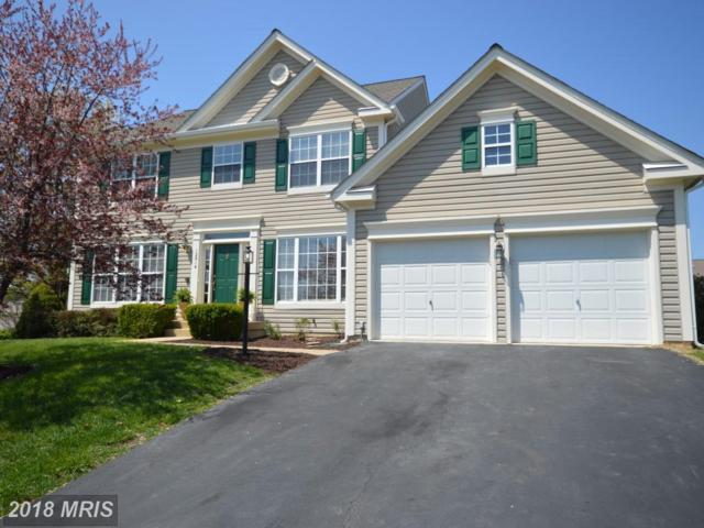 12914 Martingale Court, Bristow, VA 20136 (#PW10214048) :: The Hagarty Real Estate Team