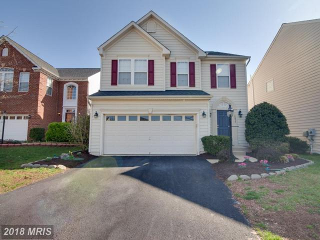 16074 Sheringham Way, Gainesville, VA 20155 (#PW10214986) :: The Tom Conner Team