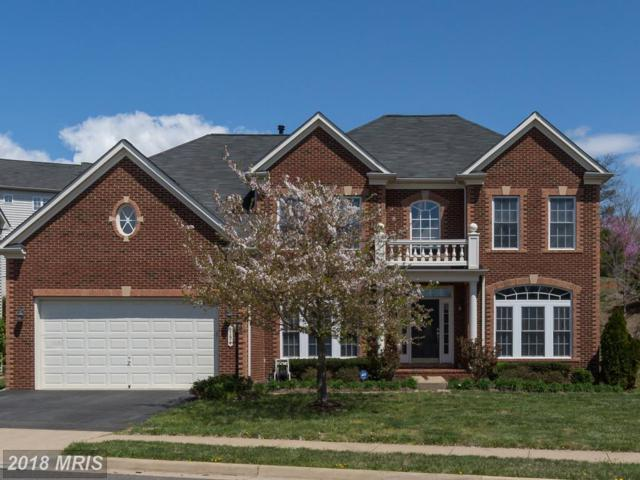 9191 Rilda Place, Bristow, VA 20136 (#PW10215087) :: The Hagarty Real Estate Team