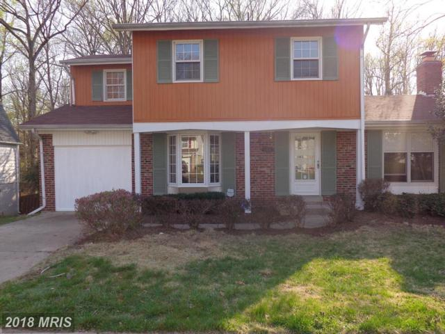 12906 Colby Drive, Woodbridge, VA 22192 (#PW10215624) :: Network Realty Group