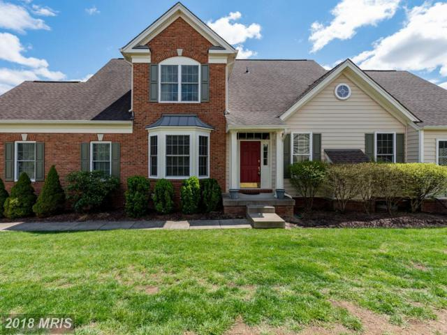 5751 Amelia Springs Circle, Haymarket, VA 20169 (#PW10216144) :: The Tom Conner Team