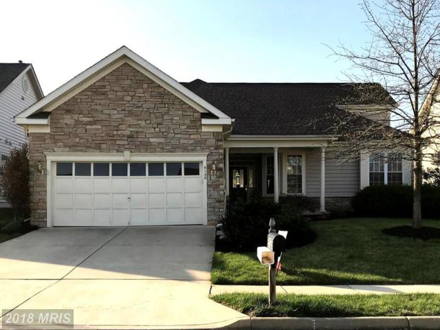 6128 Beton Court, Gainesville, VA 20155 (#PW10216241) :: The Dwell Well Group